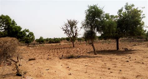 The New Humanitarian | Briefing: Nigerian farmers can't